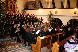 koncert nicolaus z kraczkowej w husowie